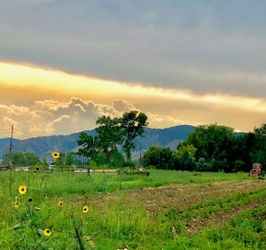 Pretty landscape in Boulder, Colorado